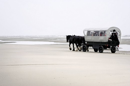 Stock Photo: 1848-484044 Horse carriage on coastal beach, island of Juist, Lower Saxony, Northern Germany, Europe