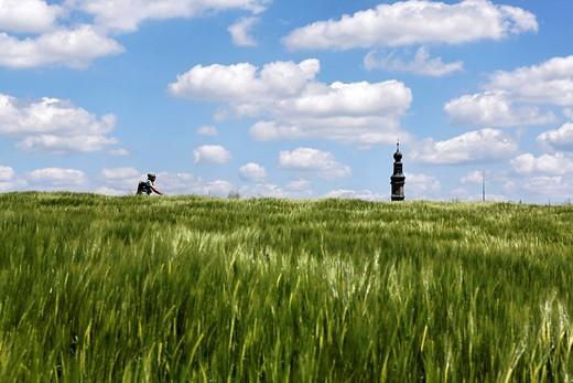 Field of barley, bike rider and church steeple of Lampoding, lake Waginger See, Chiemgau, Upper Bavaria, Germany, Europe : Stock Photo
