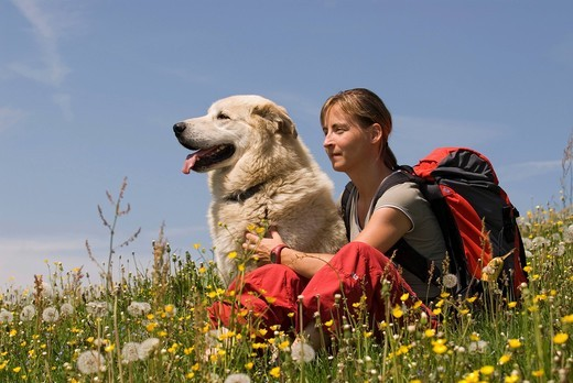 Young woman with a dog hiking in Kalkalpen National Park, Upper Austria, Austria, Europe : Stock Photo