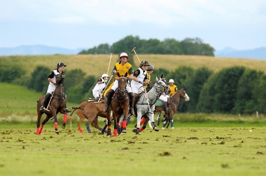 Polo players battling for the ball, Team Koenig & Cie against Team Porsche, polo, polo players, polo tournament, Berenberg High Goal Trophy 2009, Thann, Holzkirchen, Upper Bavaria, Bavaria, Germany, Europe : Stock Photo