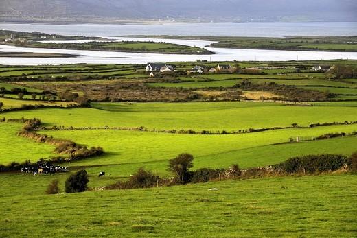 Stock Photo: 1848-487890 Farm and coastal landscape, County Clare, Republic of Ireland, Europe