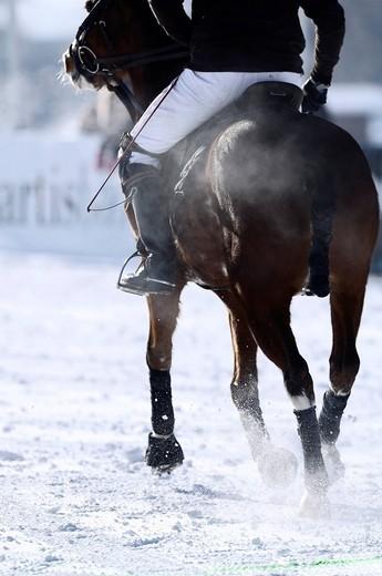 Polo player riding his horse, Snow Arena Polo World Cup 2010 polo tournament, Kitzbuehel, Tyrol, Austria, Europe : Stock Photo