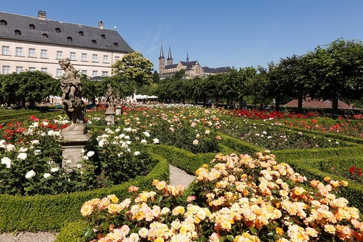 Stock Photo: 1848-489252 Rose garden of the Neue Residenz, New Residence, church of St. Michael, Bamberg, Upper Franconia, Franconia, Bavaria, Germany, Europe