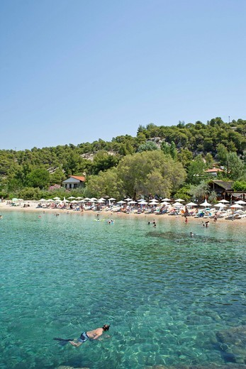 Kalogria Beach on Sithonia Peninsula in Chalcidice, Central Macedonia, Greece, Europe : Stock Photo