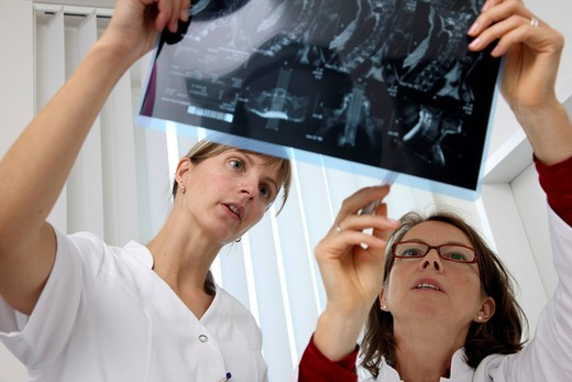 Stock Photo: 1848-490164 Medical practice, doctor and medical technician examining MRT images