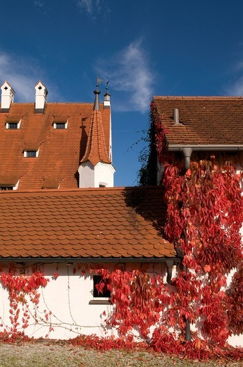 Autumn mood with red leaves, residential building in the form of a manor on Lake Ammersee, Upper Bavaria, Bavaria, Germany, Europe : Stock Photo