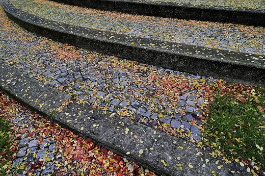 Autumn leaves on a cobblestone pavement, Germany, Europe : Stock Photo