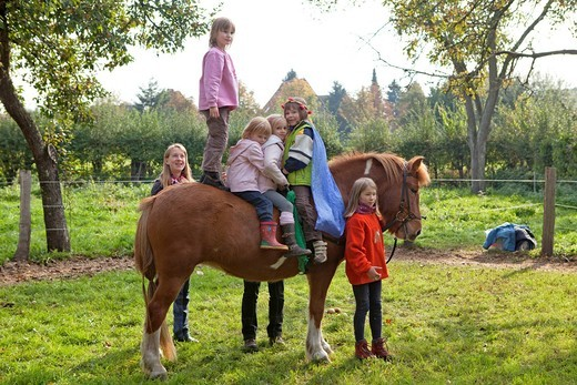 Stock Photo: 1848-493901 Four young girls on a horse