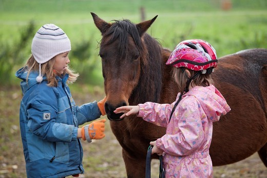 Two young girls with a pony : Stock Photo