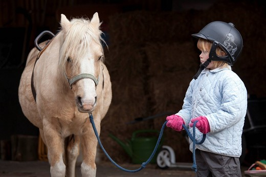 Young girl with a pony : Stock Photo