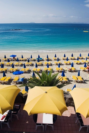 Yellow sun umbrellas on a sandy beach, Playa Dorada, Playa Blanca, Lanzarote, Canary Islands, Spain, Europe : Stock Photo