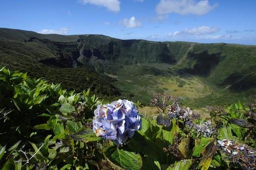Caldeira on the island of Faial, Azores, Portugal : Stock Photo
