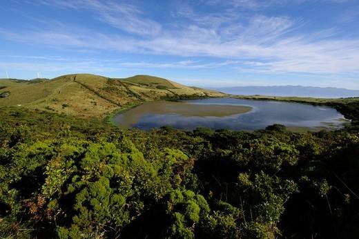 Heather Erica azorica, in front of Lagoa do Caiado, Pico Island, Azores, Portugal : Stock Photo