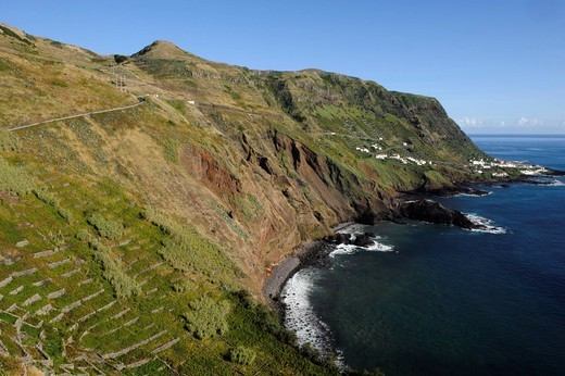 Bay of Maia, vineyards on the island of Santa Maria, Azores, Portugal : Stock Photo