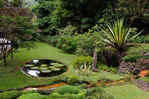 Stock Photo: 1848-497398 Park Terra Nostra in Furnas on the island of Sao Miguel, Azores, Portugal