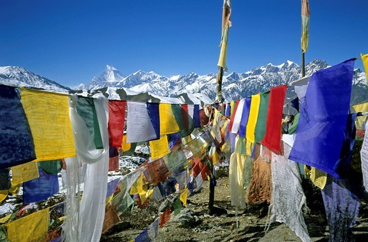 Colourful prayer flags printed with holy verses and a Wind Horse, mythical, pre_Buddhist Tibetan creature, Mt, Dhaulagiri in the background, Muktinath, Annapurna region, Himalayas, Nepal, Asia : Stock Photo
