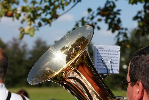 Tuba, Viehabtrieb festival ceremonial driving down of cattle from the mountain pastures into the valley in autumn in Simmershausen, Rhoen, Hesse, Germany : Stock Photo