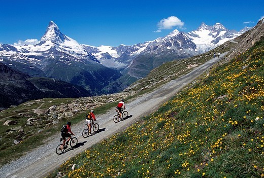 Mountain bikers in front of Mt Matterhorn, Zermatt, Valais, Switzerland, Europe : Stock Photo