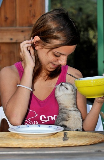 Young grey tabby cat and girl having a joint breakfast : Stock Photo