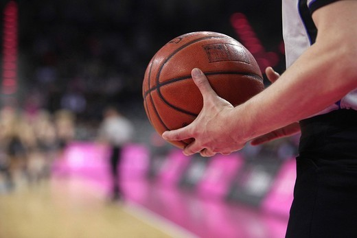 Stock Photo: 1848-5234 Referee with basketball