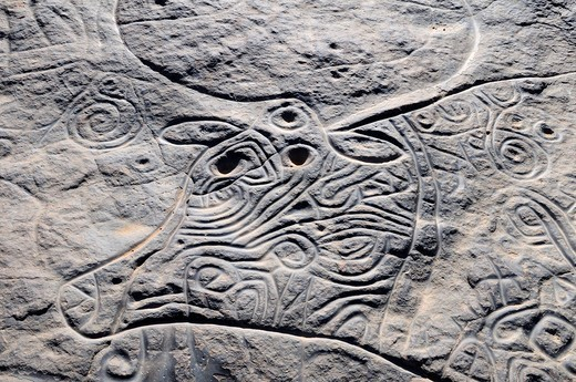 Prehistoric rock engraving of the famous curly cow, neolithic rock art of Tinterhert, Dider Valley, Tassili n´Ajjer National Park, Unesco World Heritage Site, Wilaya Illizi, Algeria, Sahara, North Africa : Stock Photo
