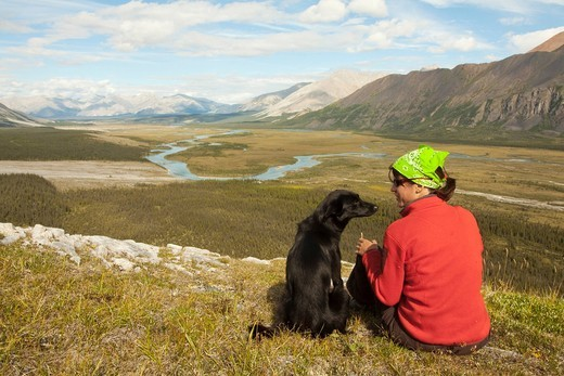 Stock Photo: 1848-530205 Young woman sitting, resting, enjoying the view, panorama, Alaskan Husky, sled dog beside her, Wind River valley and Mackenzie Mountains behind, Yukon Territory, Canada