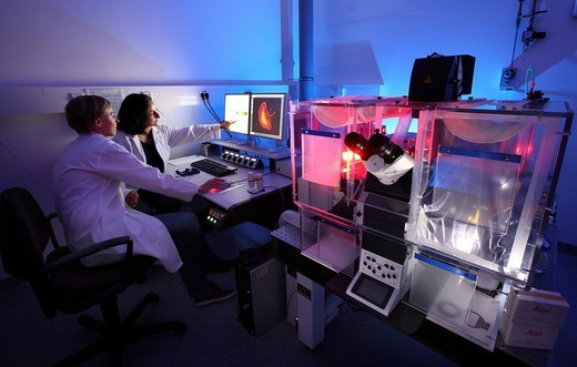Stock Photo: 1848-530799 Biotechnology, fluorescence microscope, a special version of a light microscope that can visualise fluorescent labelled molecules within a cell, Centre for Medical Biotechnology of the University Duisburg_Essen, North Rhine_Westfalia, Germany, Europe