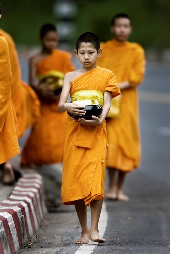 Monks walking in the street in the early morning tradition of gathering alms in Chiang Mai, Thailand, Asia : Stock Photo