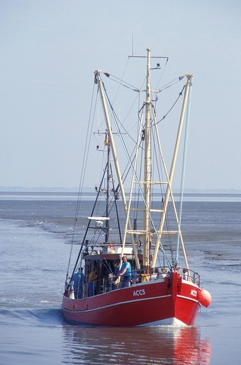 Fishing boat at Dornumersiel, fishery, North Sea, North Sea coast, Lower Saxony, Germany, Europe : Stock Photo
