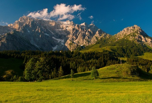 High mountain, an alpine pasture and the blue sky, evening light, Hochkoenig mountain, Salzburg, Austria, Europe : Stock Photo