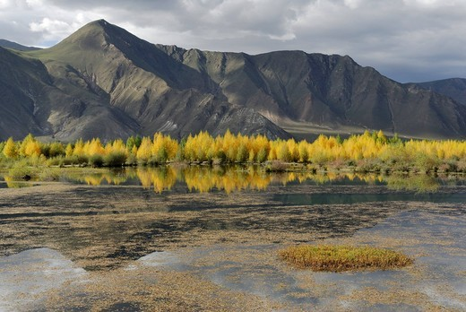 Stock Photo: 1848-535424 Mountain landscape on the Kyichu River near Lhasa, Tibet, China, Asia