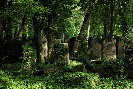Jewish Cemetery Weissensee, largest Jewish cemetery in Europe by area, Weissensee neighbourhood, Pankow district, Berlin, Germany, Europe : Stock Photo
