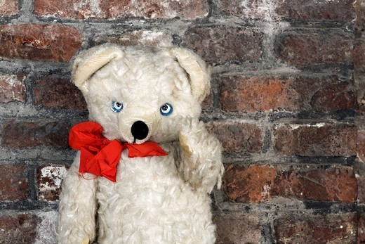 Old teddy bear with a red ribbon for sale, antiques market, Middelburg, Walcheren peninsula, Zeeland province, Netherlands, Benelux, Europe : Stock Photo