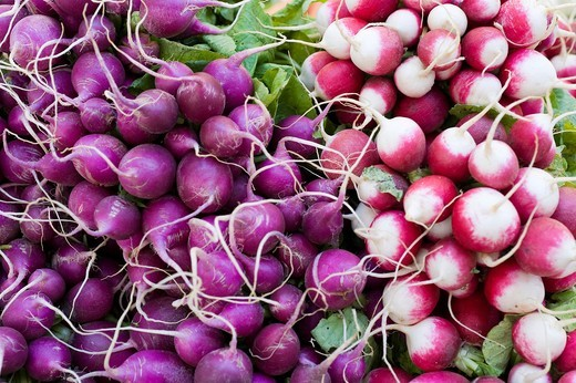 French radishes, stall on the Viktualienmarkt food market, Munich, Bavaria, Germany, Europe : Stock Photo