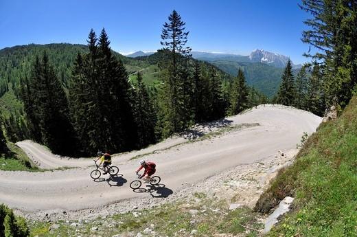 Mountain bikers riding downhill to Kreuzangeralm, in the distance, the Wilder Kaiser Mountains, Reit im Winkl, Bavaria, Germany, Tyrol, Austria, Europe : Stock Photo
