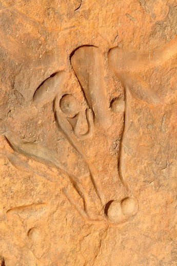 Rock engraving of a crying cow, neolithic rock art near Djanet, Tassili n´Ajjer National Park, Unesco World Heritage Site, Wilaya Illizi, Algeria, Sahara, North Africa, Africa : Stock Photo