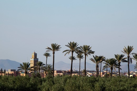 View of Marrakech, Morocco, Africa : Stock Photo