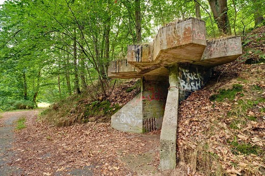 Remains of a dynamite factory of the Dynamit Nobel AG near Doemitz, Mecklenburg_Western Pomerania, Germany, Europe : Stock Photo