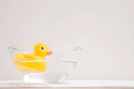 Rubber duck floating in a glass bowl : Stock Photo