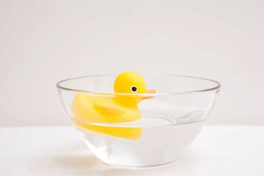 Stock Photo: 1848-541082 Rubber duck floating in a glass bowl