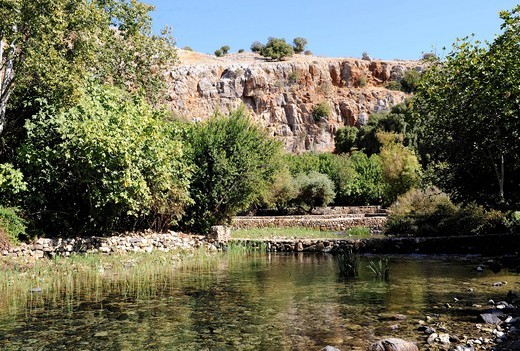 Stock Photo: 1848-541370 Banias spring, Hebrew: Hermon, one of three springs of the Jordan, Banias National Park, Golan Heights, Israel, Middle East, Southwest Asia