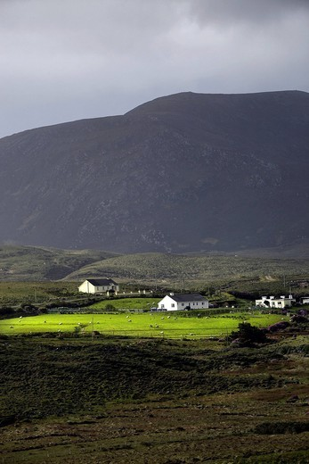 Cottages, Corraun Hill, Achill, County Mayo, Republic of Ireland, Europe : Stock Photo