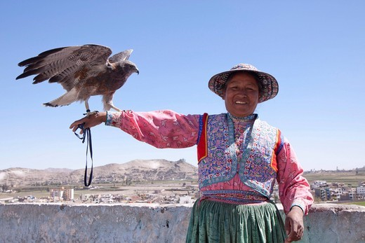 Native woman holding an eagle, Arequipa, Peru, South America : Stock Photo