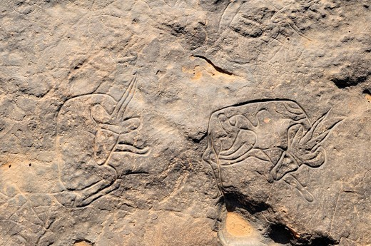 Famous rock engraving of the sleeping gazelle, neolithic rock art of Tinterhert, Dider Valley, Tassili n´Ajjer National Park, Unesco World Heritage Site, Wilaya Illizi, Algeria, Sahara, North Africa : Stock Photo