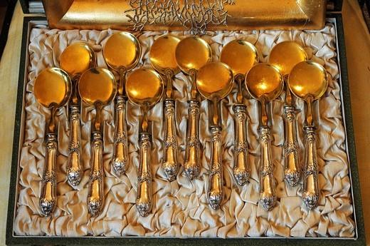 Stock Photo: 1848-545674 12 golden icecream spoons in a box, circa 1900, Italy, Villa & Ambiente, Nuremberg, Middle Franconia, Bavaria, Germany, Europe
