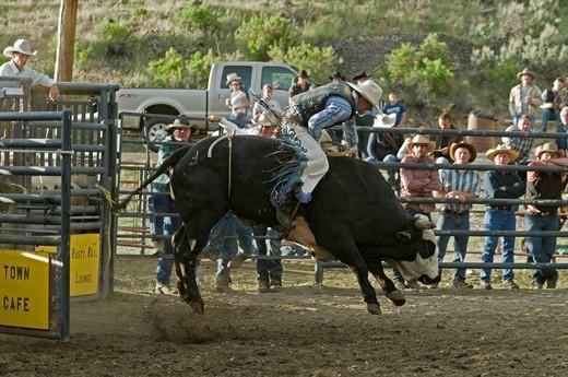 Rodeo, Gardiner, Montana, USA, North America : Stock Photo