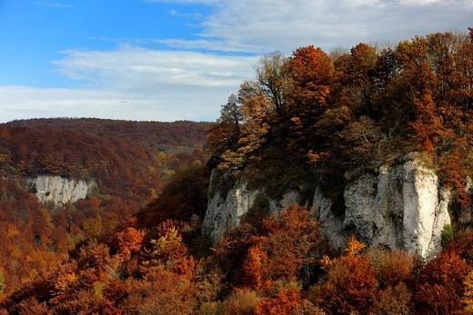 Stock Photo: 1848-548730 Autumn in the Biosphaerengebiet Swabian Alb biosphere region, Baden_Wuerttemberg, Germany, Europe