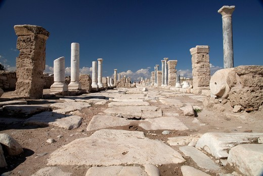 Museum and archaeological site of Laodicea, Denizli, Lycia, Turkey, Asia : Stock Photo