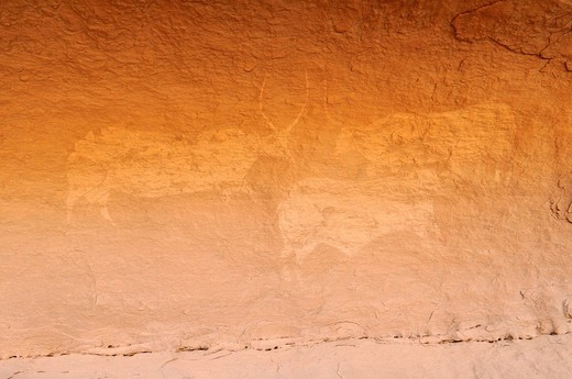 Neolithic rock art, painting of cows or bulls, Tasset Plateau, Tassili n´Ajjer National Park, Unesco World Heritage Site, Wilaya Illizi, Algeria, Sahara, North Africa : Stock Photo