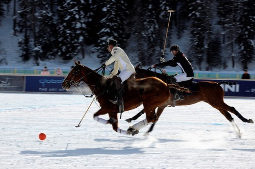 Stock Photo: 1848-553438 Polo players chasing the ball, Team Maserati against Team Brioni, 26. St. Moritz Polo World Cup on Snow, St. Moritz, Upper Engadin, Engadin, Grisons, Switzerland, Europe